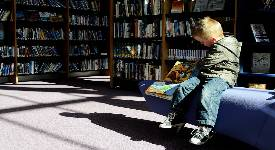 Boy sitting in library